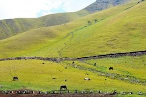 Kîrgîzstan, în sfârşit munţi, după un deşert interminabil