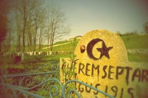 Cimitirul din Albești.