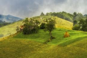 Foto: Ionuț Vlad